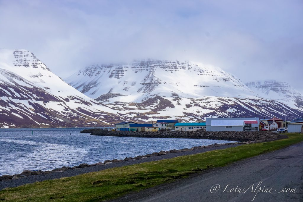 The small remote fishing village of Suderyi in the remote and beautiful Westfjords region of NW Iceland